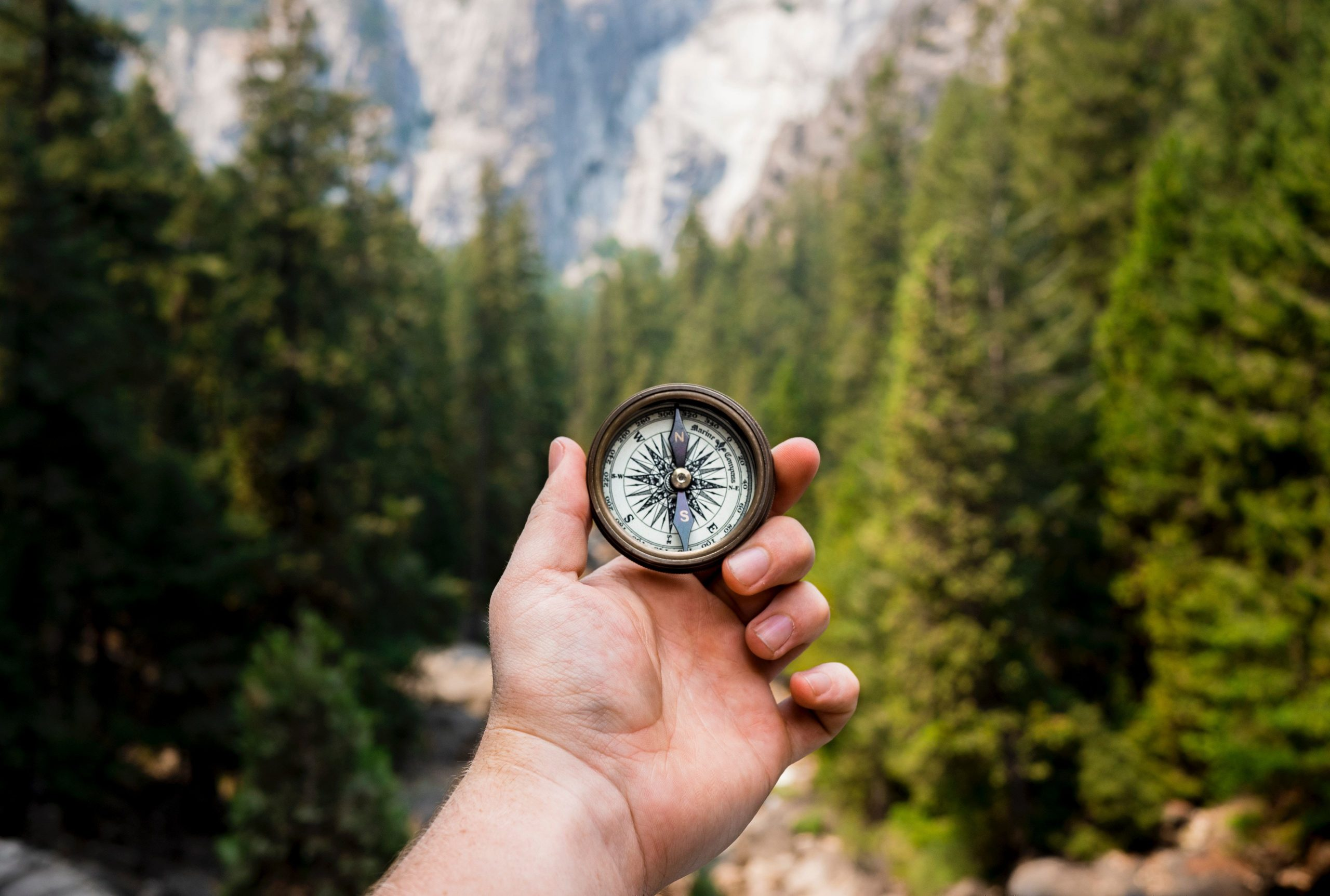 Hand holding compass in a forest